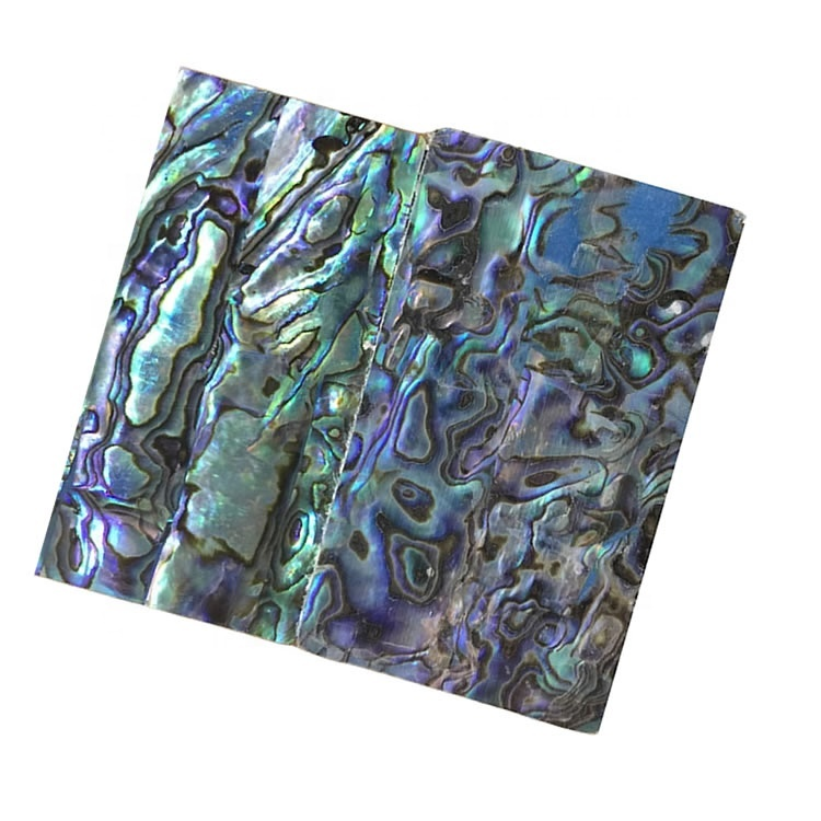 Wholesale abalone shell mosaic cabochon for jewelry Abalone Shell Loose Stone Abalone Shell semi precious