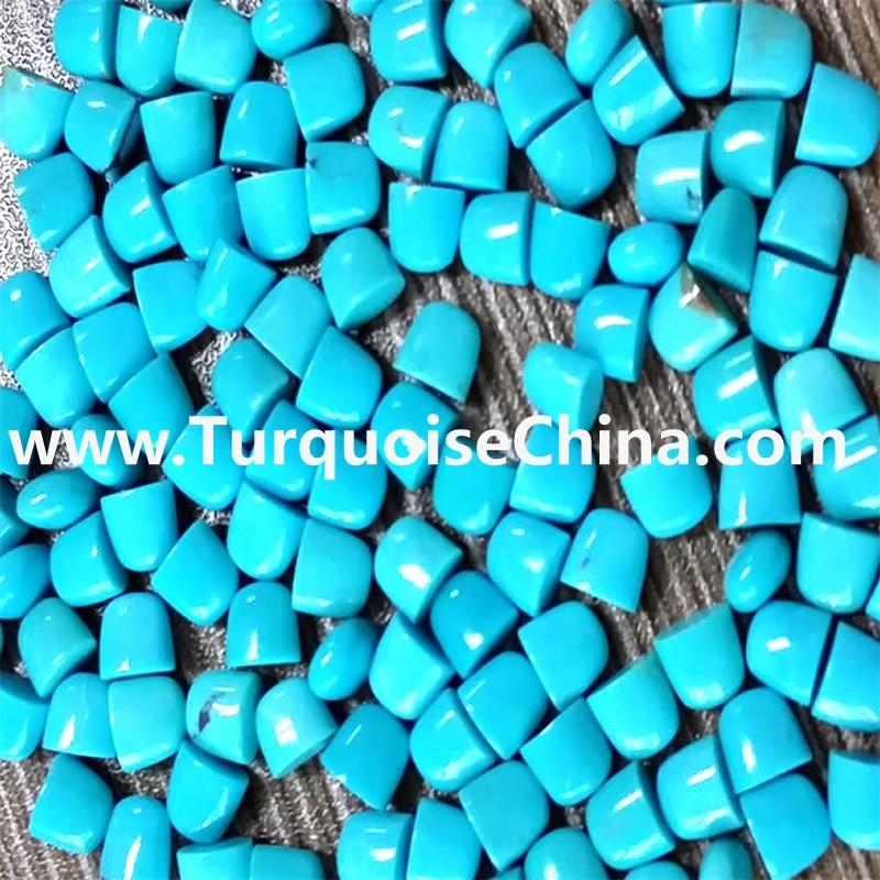 Genuine Gemstone Turquoise Tongue Beads Jewelry