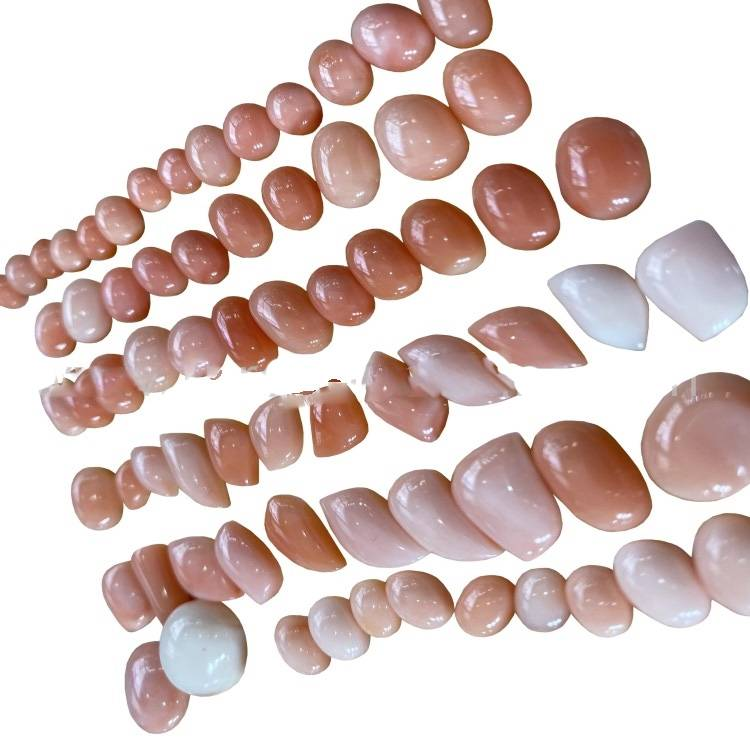 Natural Pink Coral Gemstone Cabochon for Jewelry Wholesale